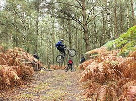 Muschivomvenn_Bikepark Filthy Trails Maasmechelen