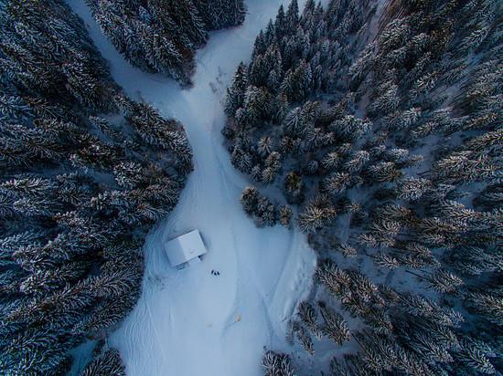 muschivomvenn_Wald,schnee